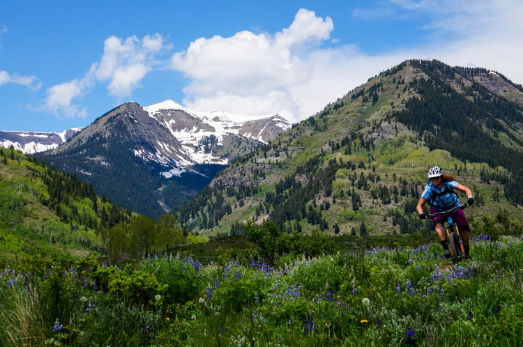 lupine trail mountain biking near Crested Butte