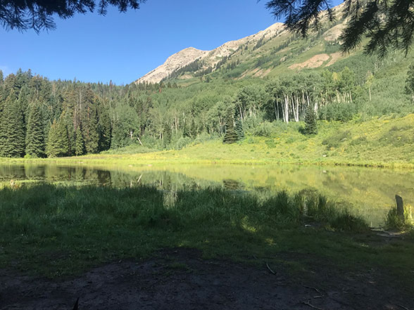 Beaver Pond at the end of the Beaver Pond Trail near Crested Butte, Colorado
