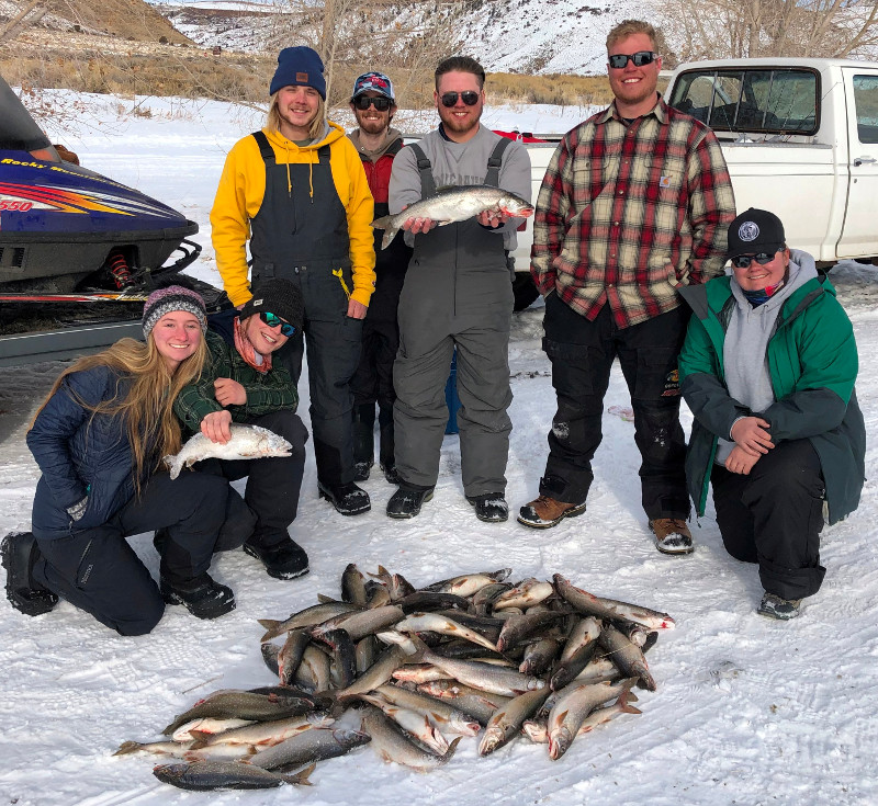 Colorado lake trout during Blue Mesa fishing tournament