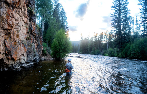 fly fishing the taylor river almont colorado