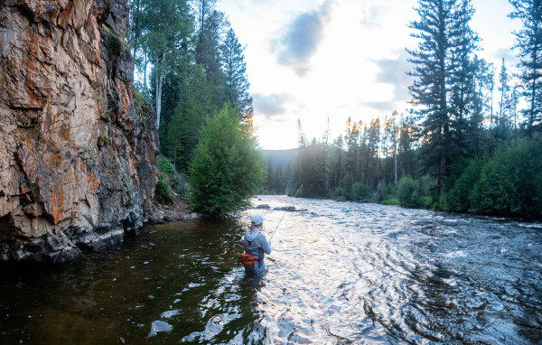 Perfect river condition for fly fishing the Taylor River almont colorado