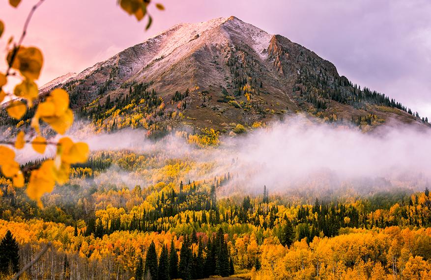 September Splendor