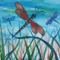 dragonflies, crested butte