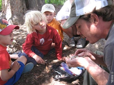 kids' science camp near Crested Butte