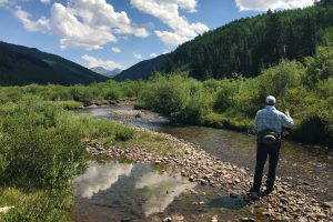 A photo of the back of a fly-fisherman as he casts into a creek in the Gunnison Valley