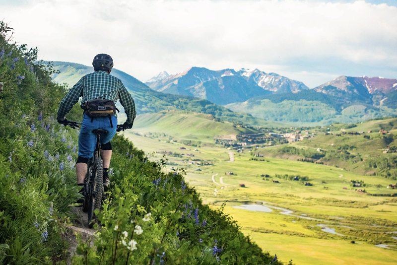 Photo of the back of a mountain biker as he rides on a trail through the wildflowers in summer. In the background are the mountains north of Crested Butte.