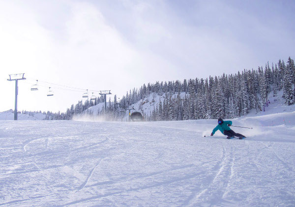 carving turns down paradise bowl