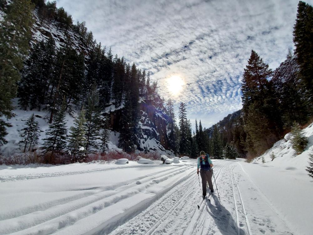 Track and skate skiing spring creek Gunnison Colorado